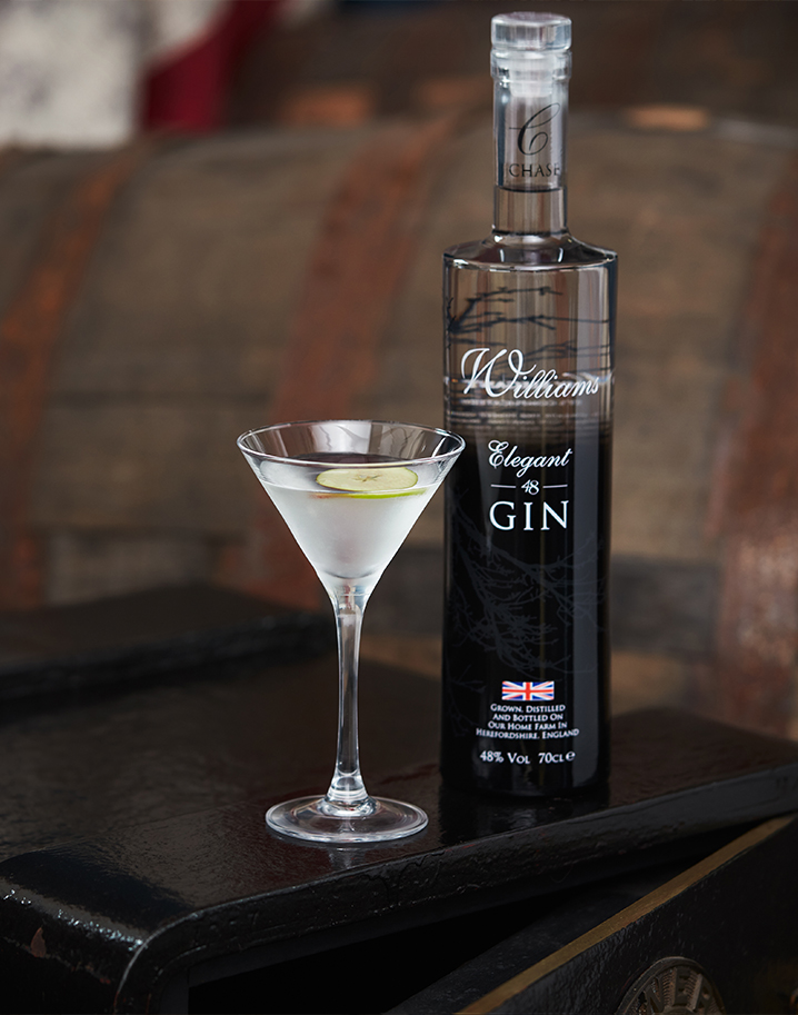 Williams-Elegant-48-Gin-Lifestyle